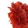 PICK ROSA FRISE' ROSSO CM 14 X 14 X 26 H
