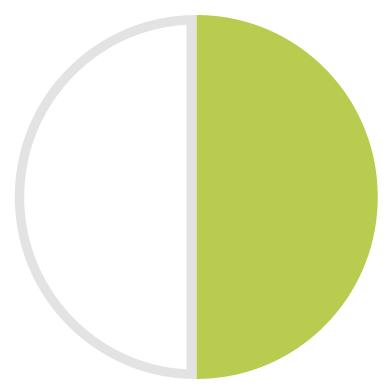 Polimero bianco/verde pistacchio 221
