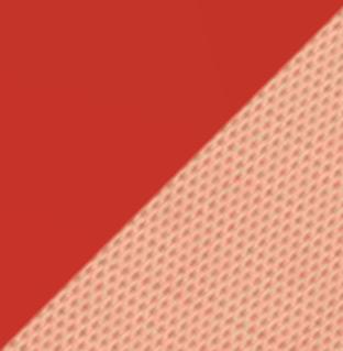 Tessuto Pesca 300/41 | Struttura Rosso scarlatto 50